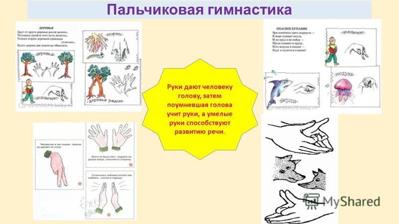 Пальчиковая гимнастика Руки дают человеку голову, затем поумневшая голова учит руки, а умелые руки способствуют развитию речи.