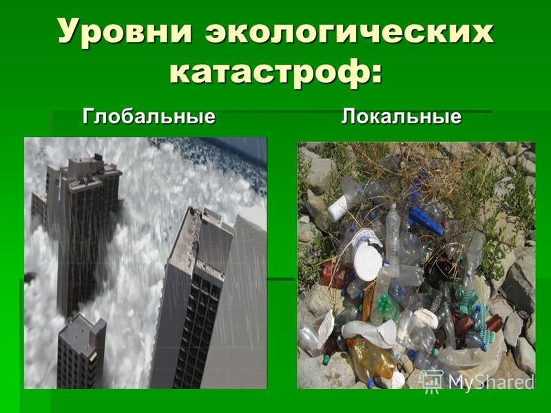 Уровни экологических катастроф: Глобальные Локальные