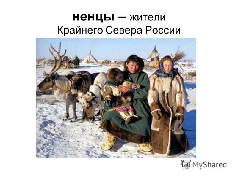 ненцы – жители Крайнего Севера России