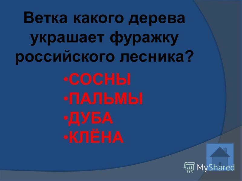 Ветка какого дерева украшает фуражку российского лесника? СОСНЫ ПАЛЬМЫ ДУБА КЛЁНА
