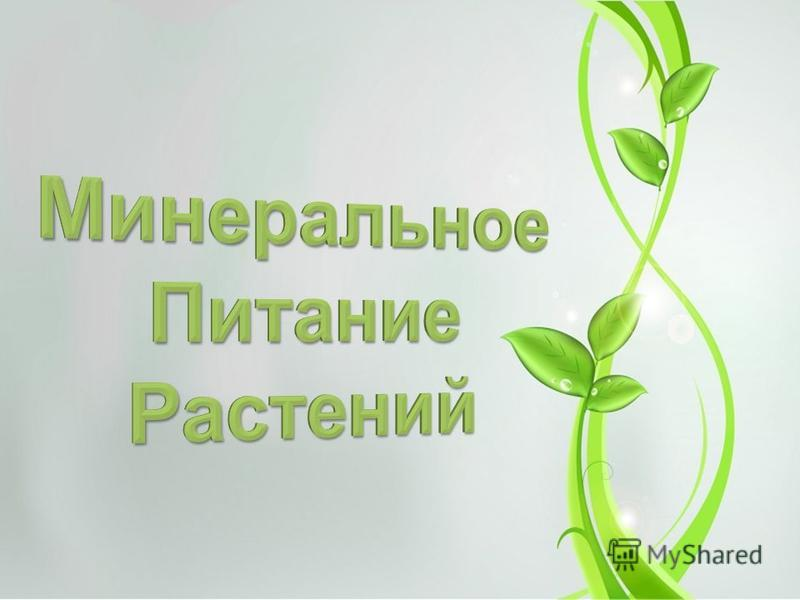 Минеральное питание растений