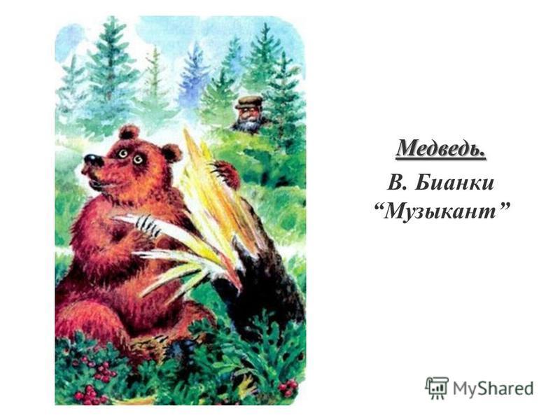 Медведь. В. Бианки Музыкант