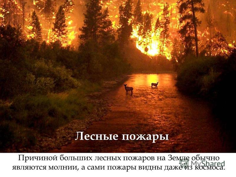 Причиной больших лесных пожаров на Земле обычно являются молнии, а сами пожары видны даже из космоса. Лесные пожары