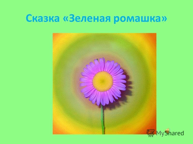 Сказка «Зеленая ромашка»