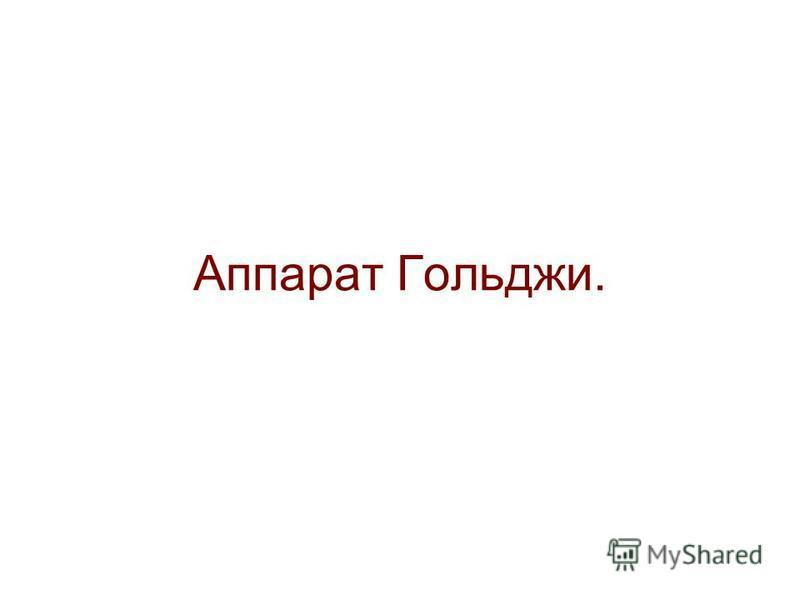 Аппарат Гольджи.