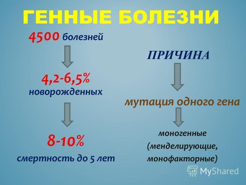 ГЕННЫЕ БОЛЕЗНИ ПРИЧИНА 4500 болезней 4,2-6,5% новорожденных 8-10% смертность до 5 лет мутация одного гена моногенные (менделирующие, монофакторные)
