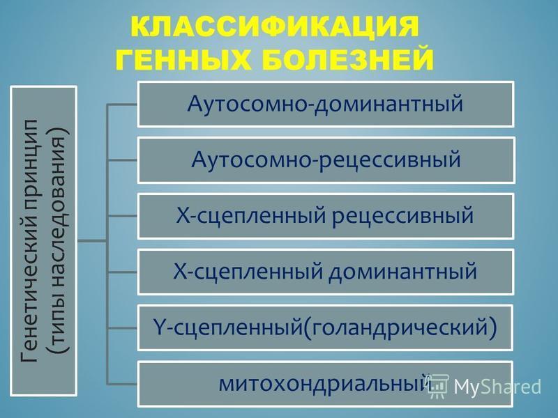 Генетический принцип (типы наследования) Аутосомно-доминантный Аутосомно-рецессивный Х-сцепленный рецессивный Х-сцепленный доминантный Y-сцепленный(голандрический) митохондриальный КЛАССИФИКАЦИЯ ГЕННЫХ БОЛЕЗНЕЙ