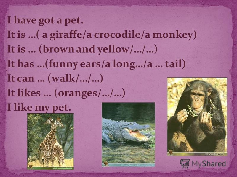 I have got a pet. It is …( a giraffe/a crocodile/a monkey) It is … (brown and yellow/…/…) It has …(funny ears/a long…/a … tail) It can … (walk/…/…) It likes … (oranges/…/…) I like my pet.