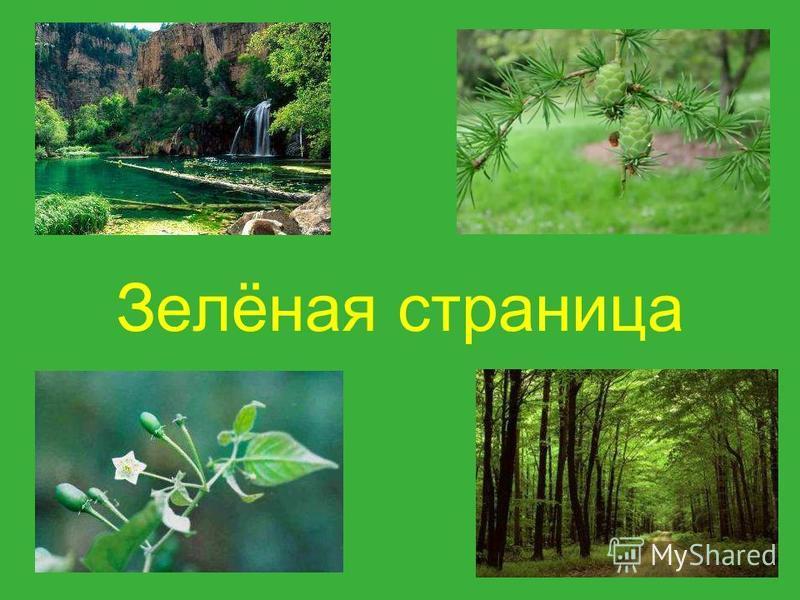 Выбирайте страницу: Зеленая страница Синяя страница Жёлтая страница Белая страница Красная страница Чёрная страница Показать всю книгу
