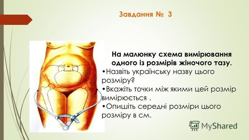 Завдання 3 На малюнку схема вимірювання одного із розмірів жіночого тазу. Назвіть українську назву цього розміру? Вкажіть точки між якими цей розмір вимірюється. Опишіть середні розміри цього розміру в см.
