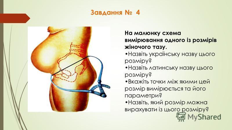 Завдання 4 На малюнку схема вимірювання одного із розмірів жіночого тазу. Назвіть українську назву цього розміру? Назвіть латинську назву цього розміру? Вкажіть точки між якими цей розмір вимірюється та його параметри? Назвіть, який розмір можна вира
