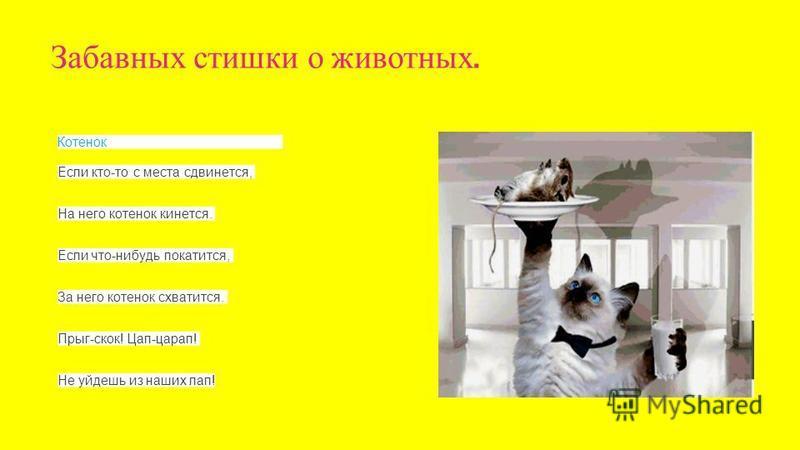 Котенок Если кто-то с места сдвинется, На него котенок кинется. Если что-нибудь покатится, За него котенок схватится. Прыг-скок! Цап-царап! Не уйдешь из наших лап! Забавных стишки о животных.
