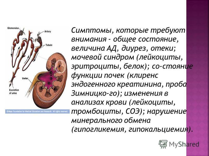 Симптомы, которые требуют внимания - общее состояние, величина АД, диурез, отеки; мочевой синдром (лейкоциты, эритроциты, белок); со-стояние функции почек (клиренс эндогенного креатинина, проба Зимницко-го); изменения в анализах крови (лейкоциты, тро