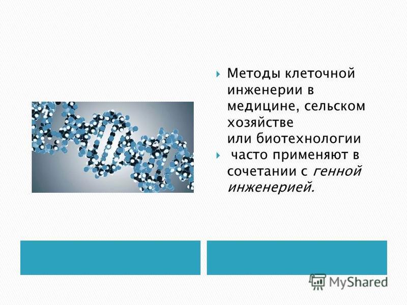 Методы клеточной инженерии в медицине, сельском хозяйстве или биотехнологии часто применяют в сочетании с генной инженерией.