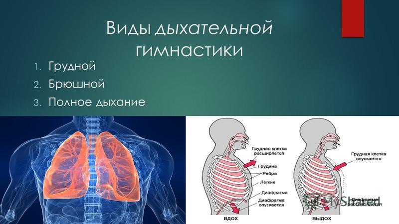 Виды дыхательной гимнастики 1. Грудной 2. Брюшной 3. Полное дыхание