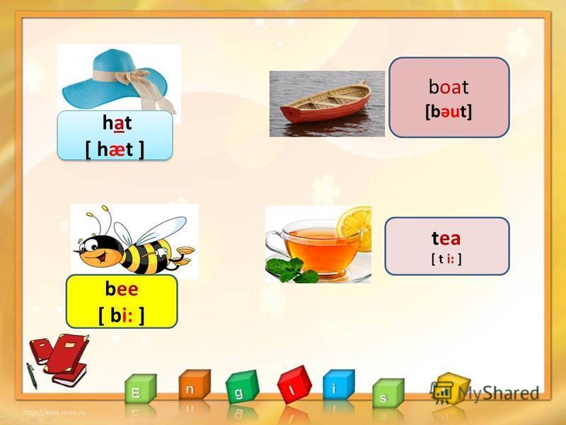 boat [bəut] tea [ t i: ] hat [ hæt ] hat [ hæt ] bee [ bi: ]