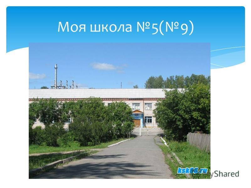 Моя школа 5(9)