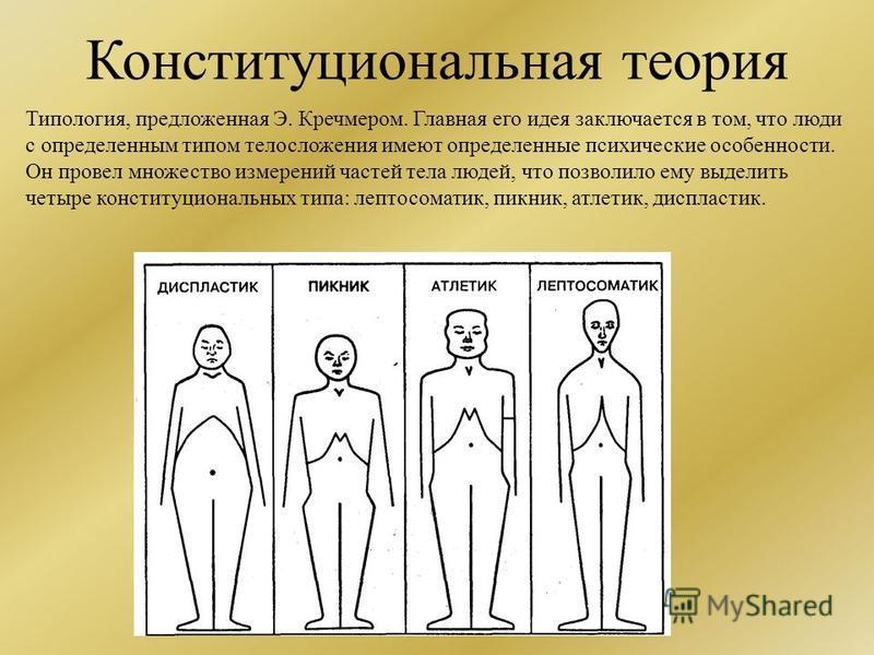 Конституциональная теория Типология, предложенная Э. Кречмером. Главная его идея заключается в том, что люди с определенным типом телосложения имеют определенные психические особенности. Он провел множество измерений частей тела людей, что позволило