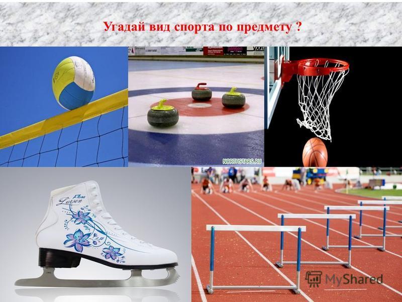 Угадай вид спорта по предмету ?