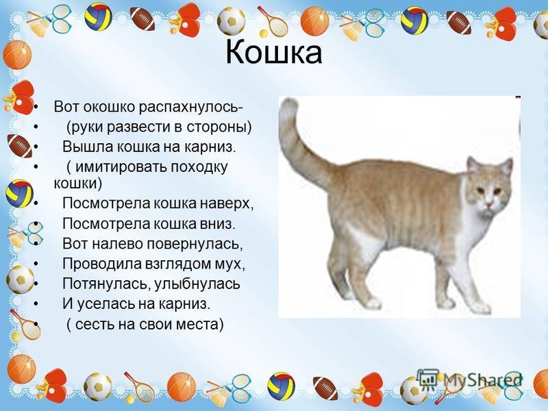 Кошка Вот окошко распахнулось- (руки развести в стороны) Вышла кошка на карниз. ( имитировать походку кошки) Посмотрела кошка наверх, Посмотрела кошка вниз. Вот налево повернулась, Проводила взглядом мух, Потянулась, улыбнулась И уселась на карниз. (