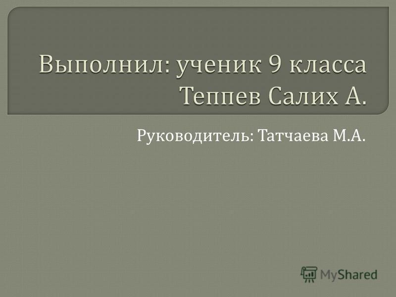 Руководитель : Татчаева М. А.