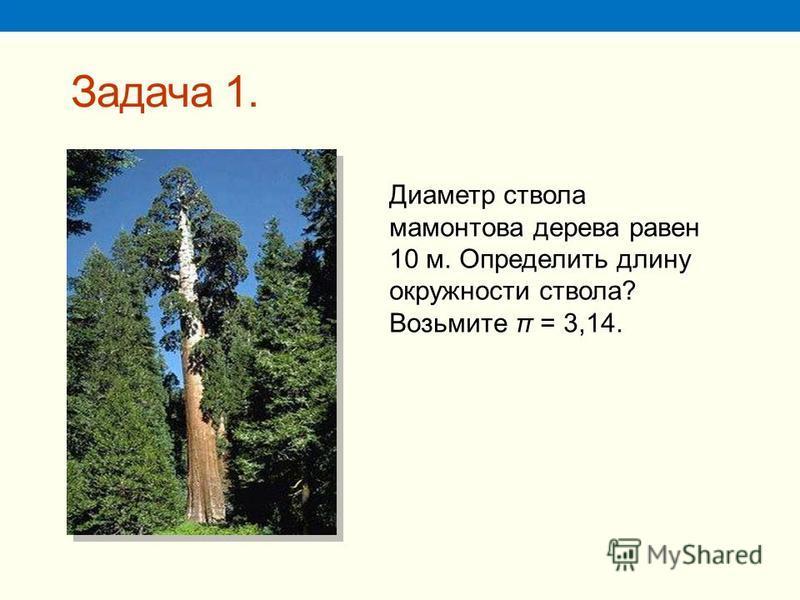 Задача 1. Диаметр ствола мамонтова дерева равен 10 м. Определить длину окружности ствола? Возьмите π = 3,14.