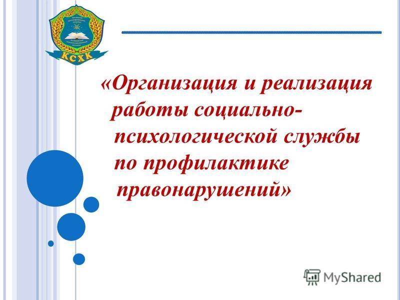 «Организация и реализация работы социально- психологической службы по профилактике правонарушений»