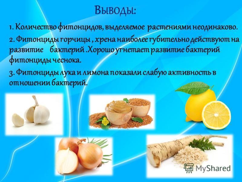 В ЫВОДЫ : 1. Количество фитонцидов, выделяемое растениями неодинаково. 2. Фитонциды горчицы, хрена наиболее губительно действуют на развитие бактерий.Хорошо угнетает развитие бактерий фитонциды чеснока. 3. Фитонциды лука и лимона показали слабую акти