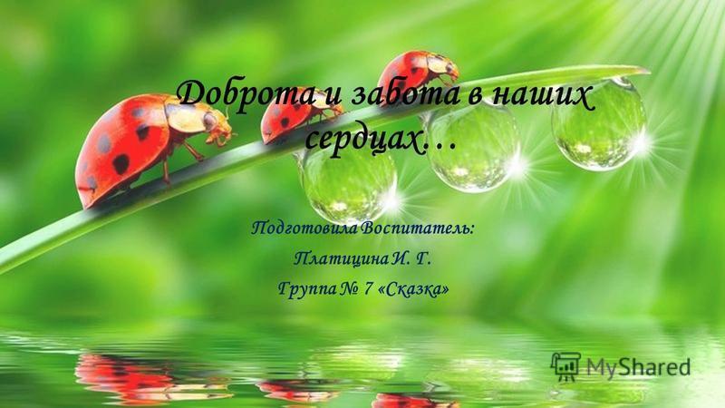 Доброта и забота в наших сердцах… Подготовила Воспитатель: Платицина И. Г. Группа 7 «Сказка»