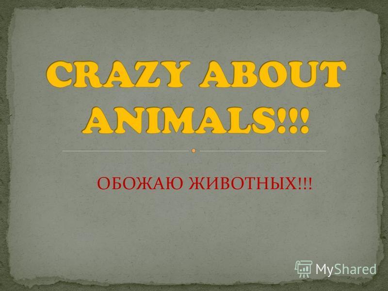 ОБОЖАЮ ЖИВОТНЫХ!!!