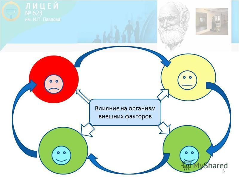 3 Влияние на организм внешних факторов