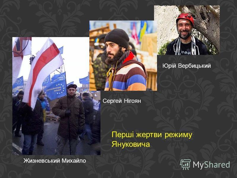 Сергей Нігоян Юрій Вербицький Жизневський Михайло Перші жертви режиму Януковича