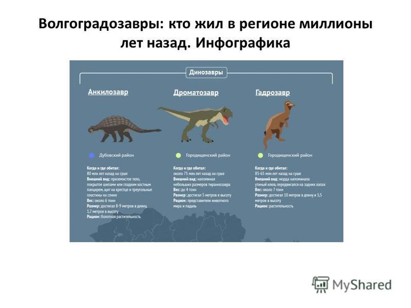 Волгоградозавры: кто жил в регионе миллионы лет назад. Инфографика