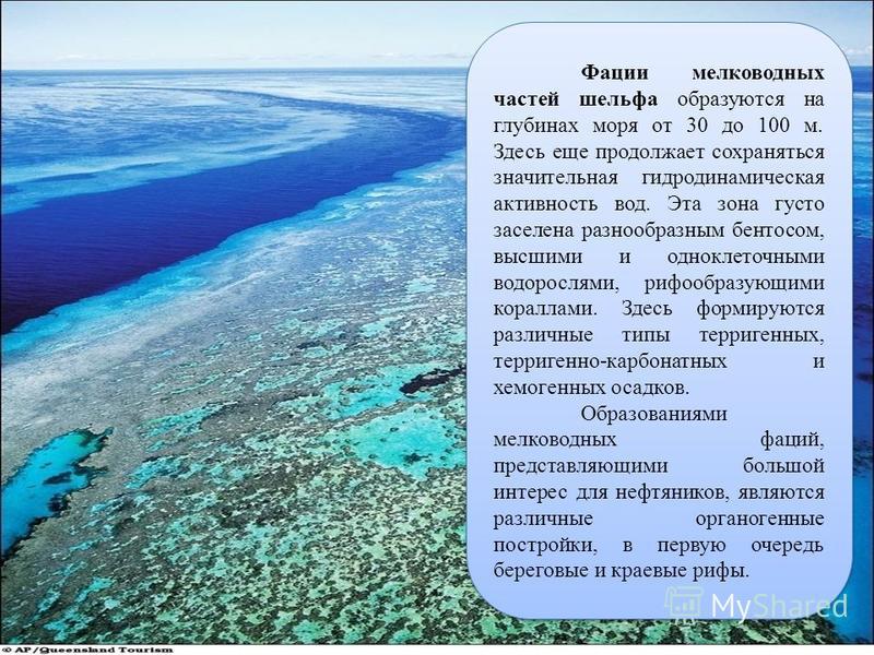 44 Фации мелководных частей шельфа образуются на глубинах моря от 30 до 100 м. Здесь еще продолжает сохраняться значительная гидродинамическая активность вод. Эта зона густо заселена разнообразным бентосом, высшими и одноклеточными водорослями, рифоо