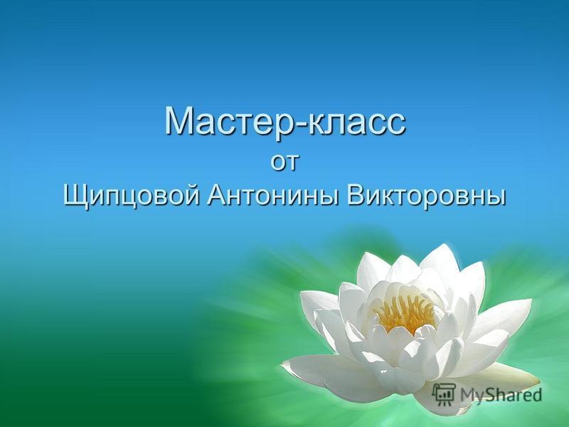 Мастер-класс от Щипцовой Антонины Викторовны
