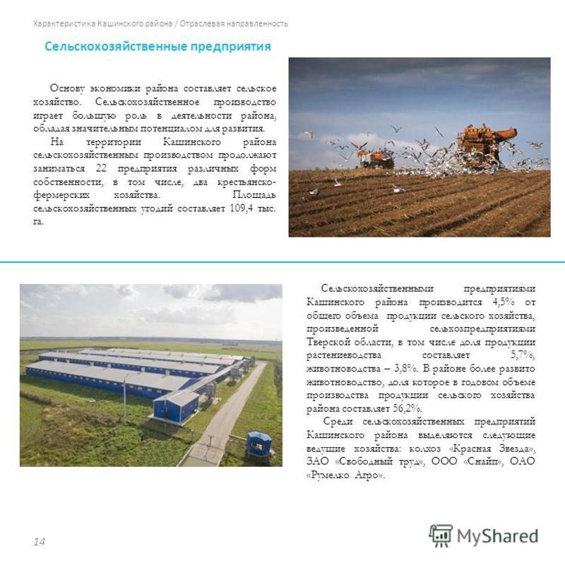 Характеристика Кашинского района / Отраслевая направленность Основу экономики района составляет сельское хозяйство. Сельскохозяйственное производство играет большую роль в деятельности района, обладая значительным потенциалом для развития. На террито