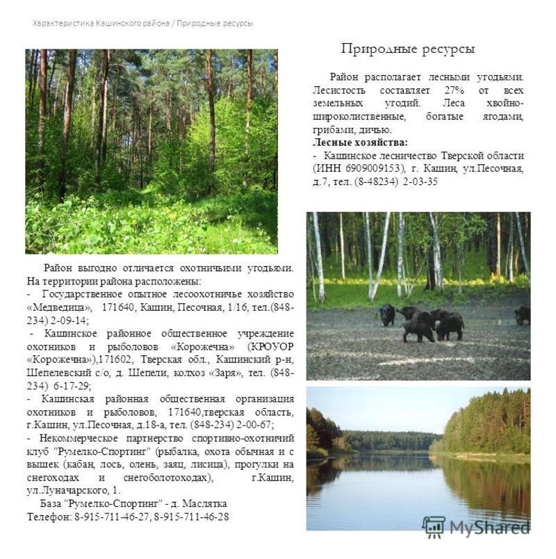 Характеристика Кашинского района / Природные ресурсы Район располагает лесными угодьями. Лесистость составляет 27% от всех земельных угодий. Леса хвойно- широколиственные, богатые ягодами, грибами, дичью. Лесные хозяйства: - Кашинское лесничество Тве
