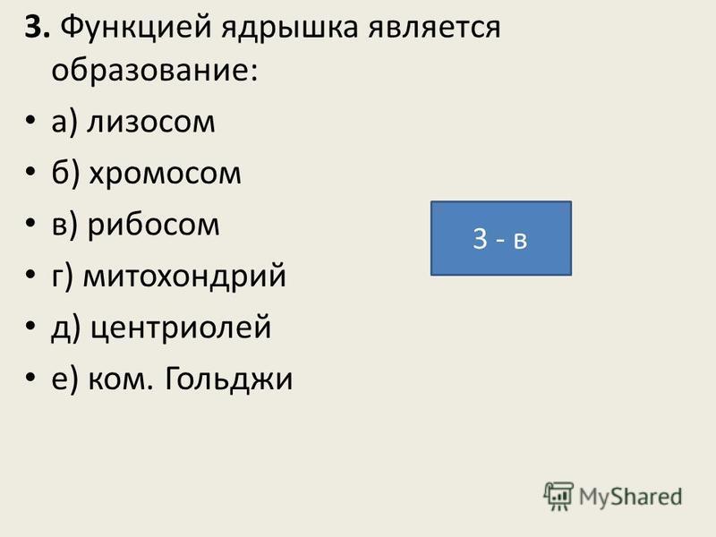 3. Функцией ядрышка является образование: а) лизосом б) хромосом в) рибосом г) митохондрий д) центриолей е) ком. Гольджи 3 - в