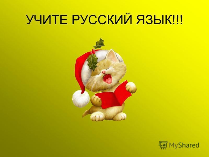 УЧИТЕ РУССКИЙ ЯЗЫК!!!