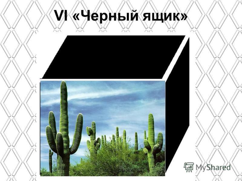 VI «Черный ящик»