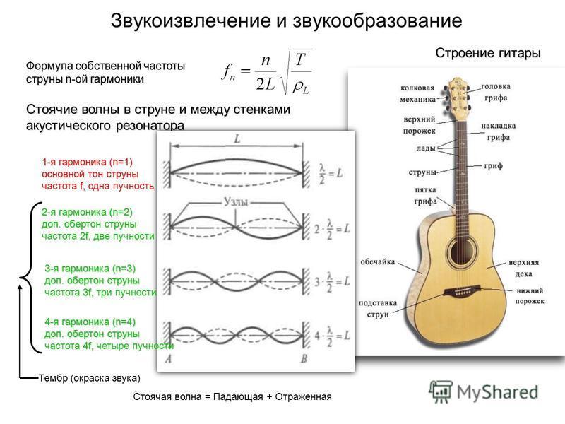 Звукоизвлечение и звукообразование Строение гитары Формула собственной частоты струны n-ой гармоники Стоячие волны в струне и между стенками акустического резонатора Стоячая волна = Падающая + Отраженная 1-я гармоника (n=1) основной тон струны f, час
