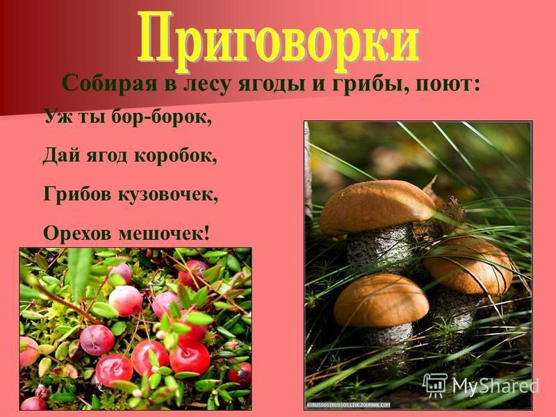 Собирая в лесу ягоды и грибы, поют: Уж ты бор-борок, Дай ягод коробок, Грибов кузовочек, Орехов мешочек!