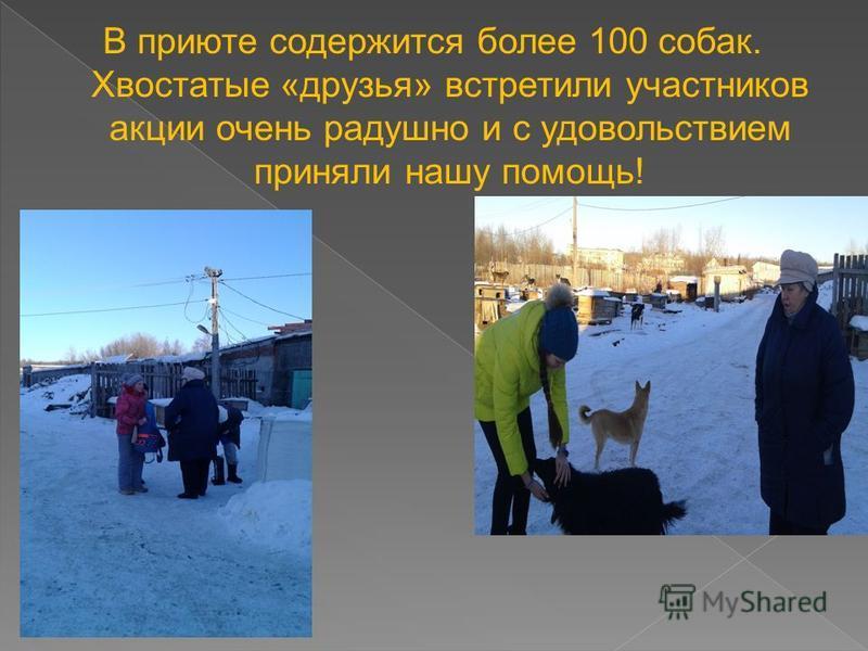 В приюте содержится более 100 собак. Хвостатые «друзья» встретили участников акции очень радушно и с удовольствием приняли нашу помощь!