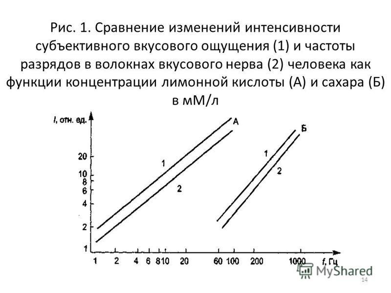 Рис. 1. Сравнение изменений интенсивности субъективного вкусового ощущения (1) и частоты разрядов в волокнах вкусового нерва (2) человека как функции концентрации лимонной кислоты (А) и сахара (Б) в мМ/л 14