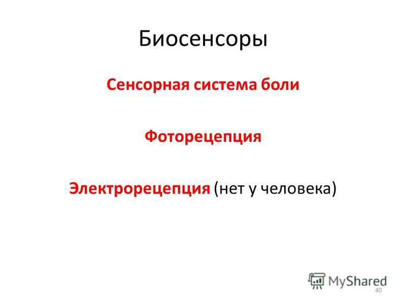 Биосенсоры Сенсорная система боли Фоторецепция Электрорецепция (нет у человека) 40