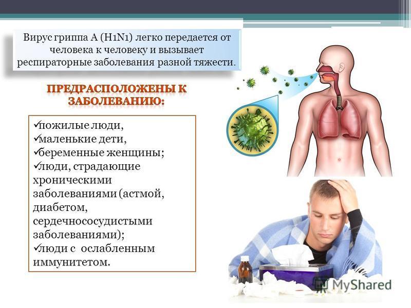 пожилые люди, маленькие дети, беременные женщины; люди, страдающие хроническими заболеваниями (астмой, диабетом, сердечно сосудистыми заболеваниями); люди с ослабленным иммунитетом. Вирус гриппа A (H1N1) легко передается от человека к человеку и вызы