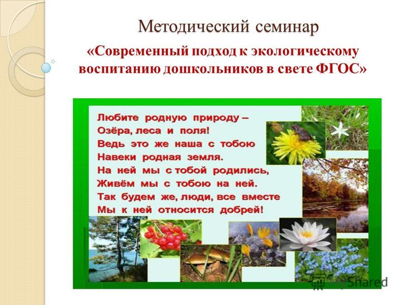 Методический семинар «Современный подход к экологическому воспитанию дошкольников в свете ФГОС»