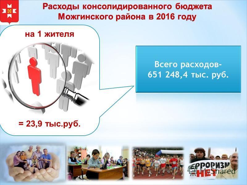 Расходы консолидированного бюджета Можгинского района в 2016 году = 23,9 тыс.руб. на 1 жителя