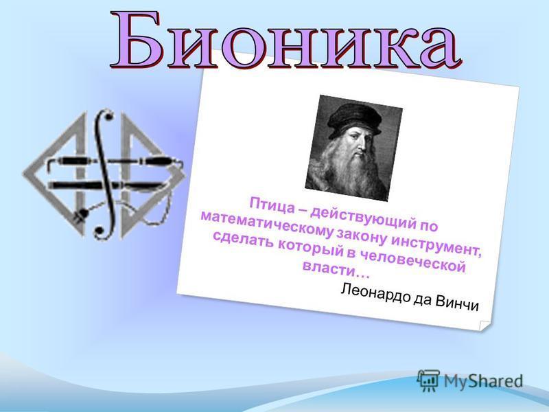 Птица – действующий по математическому закону инструмент, сделать который в человеческой власти… Леонардо да Винчи