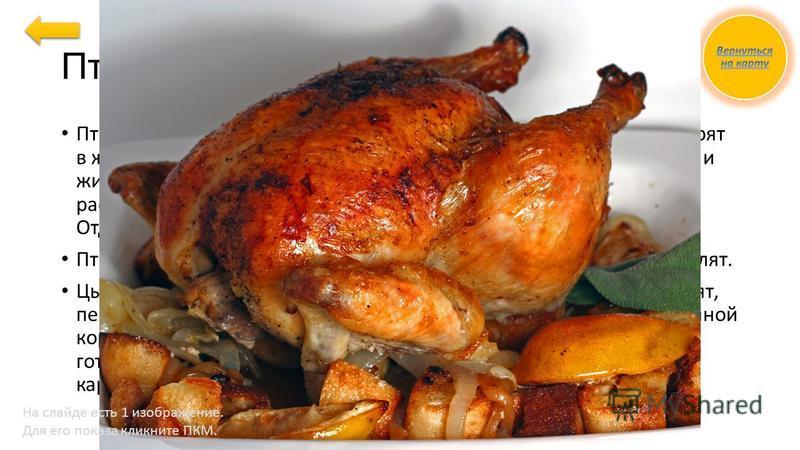 Птица и цыпленок Птицу жарят тушками целиком, заправленными в «кармашек». Жарят в жарочном шкафу, периодически поливая образовавшимся соком и жиром. При подаче порционируют по 2 куска на порцию, подают с рассыпчатыми кашами, тушеной капустой, печеным